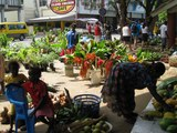 Market in Port Vila