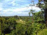 "Blick vom Dorf Muara Sekalo in Richtung Nationalpark ""Bukit Tigapuluh"" in Indonesien"
